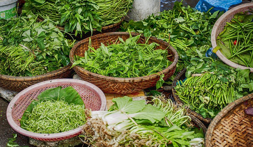 herbs-2464828_1920