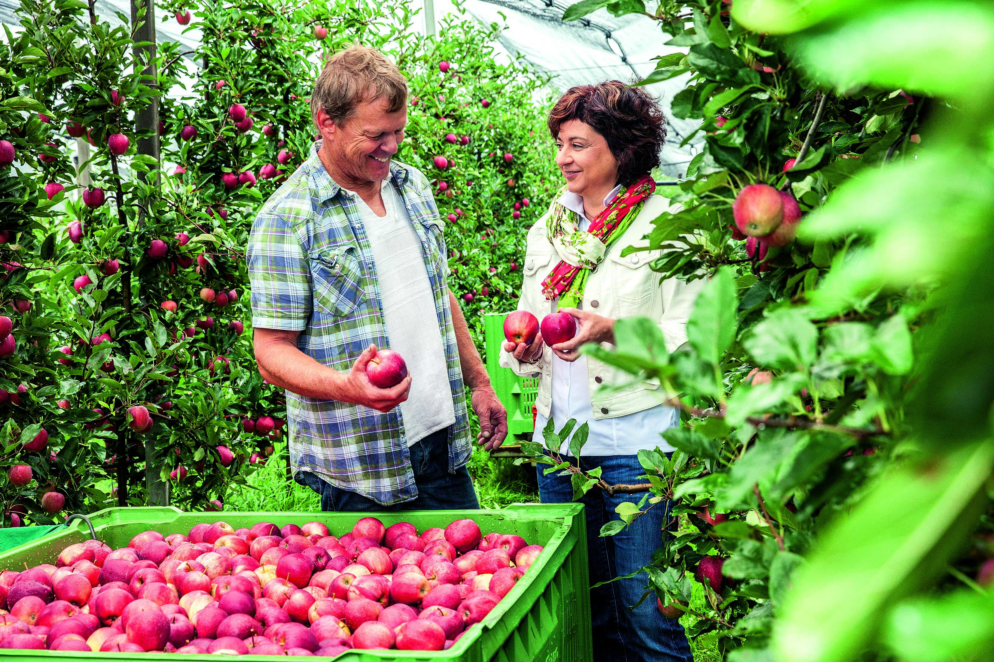 Holle Baby Food - Zukunftsstiftung Landwirtschaft